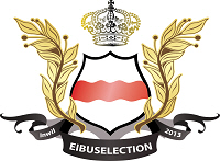 eibuselection